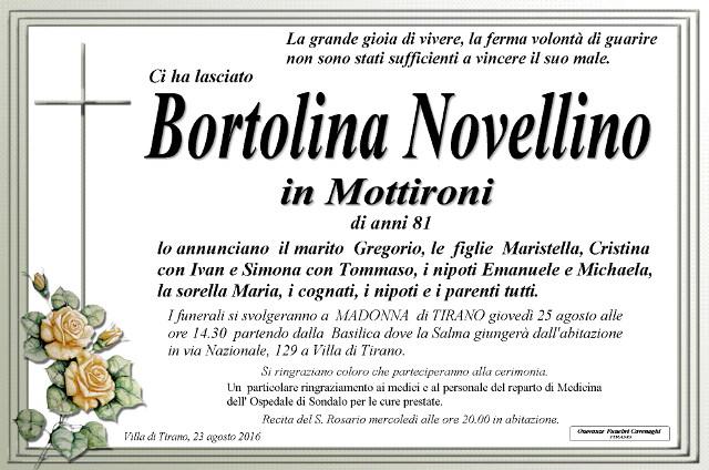 Novellino Bortolina