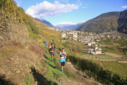 valtellina wine trail 2019